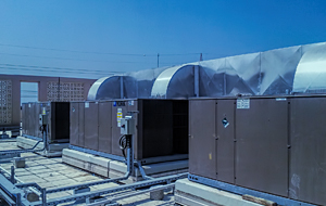 Services DX Cooling System